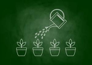 Qu'est-ce que le lead nurturing