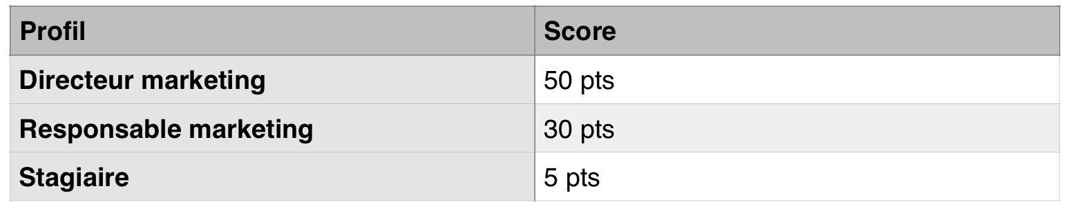 Exemple de lead scoring basé sur le profil